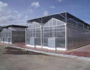 山东温室大棚建设的一