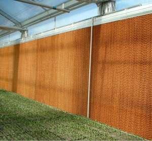 简析大棚温室除湿的方